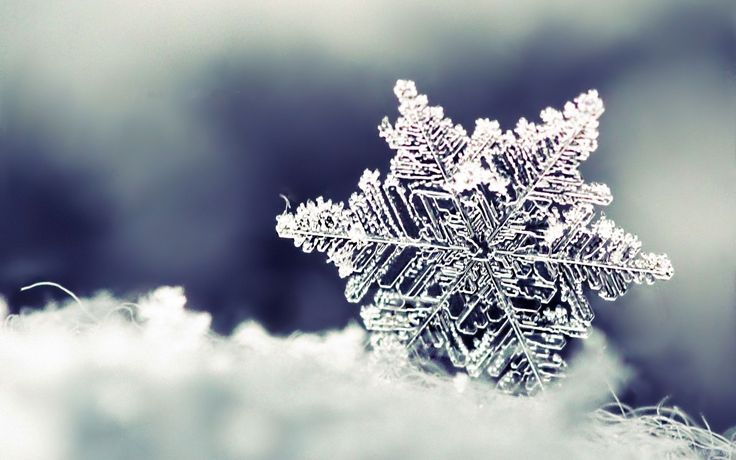Check out this amazing close-up shot of a #winter #snowflake.  See, snow can be #beautiful if you look at it really, really closely!  http://womanfreebies.com/?snowflake