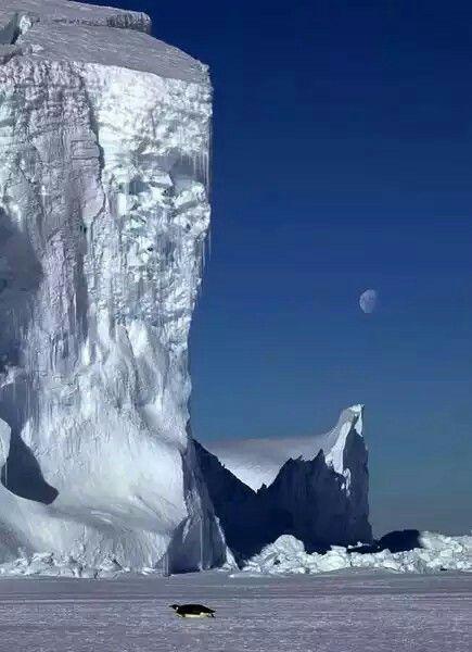 Cap Washington, Terre Victoria, Antarctique