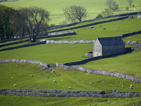 Yorkshire stone walls.  Wow!  A real live patchwork quilt.  One of my favorite views.