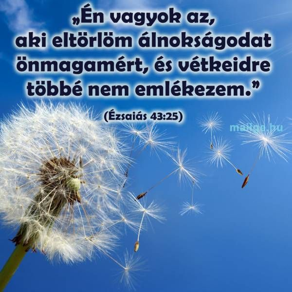 http://www.maiige.hu/igefolyam