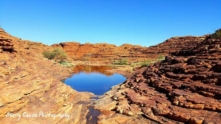 Kings Canyon NT- Rim walk