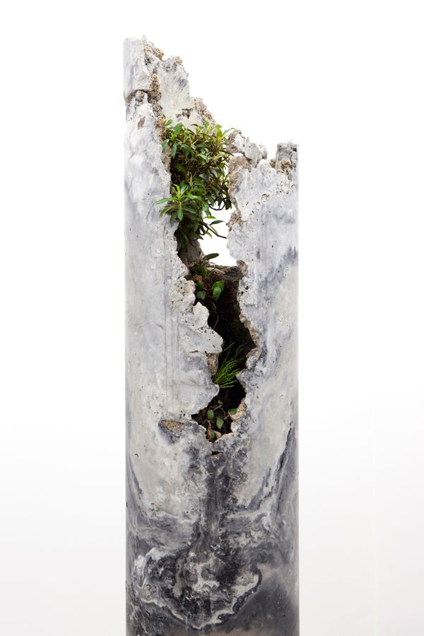Solo Exhibition at Sarah Cottier Gallery, March 2013. innerouter consists of five concrete forms with a slag and ash aggregate, hosting lithophytic plant species native to Sydney.