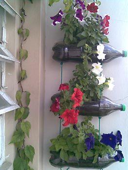 Vasos suspensos com garrafas pet
