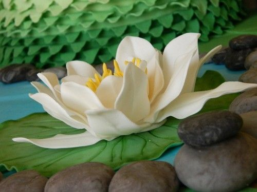 La regina del lago…tutorial ninfea - Cake