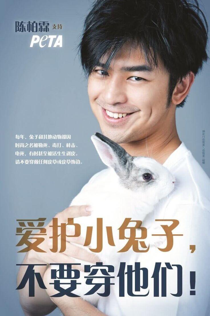 bo-lin-chen-bunny-sc-300-peta-asia