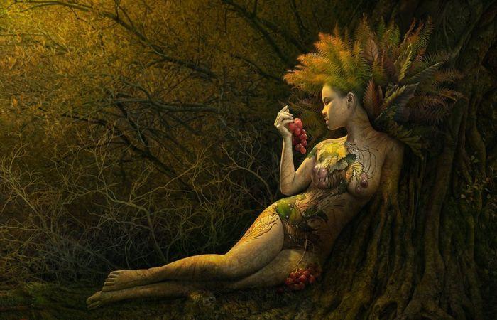 В тени леса. Автор: Duong Quoc Dinh.