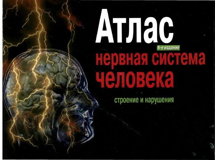 Нервная система человека строение и нарушения атлас