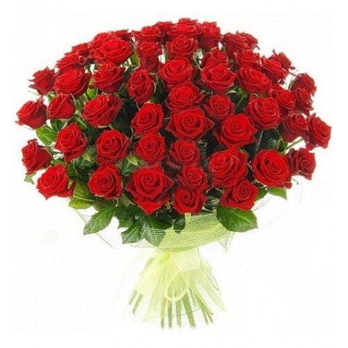 Букет из 51 красной розы «Любовный напиток»