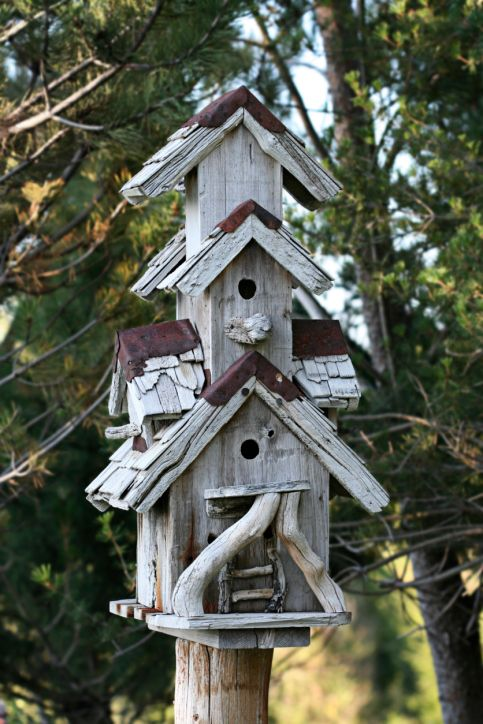 78 Decorative Painted Outdoor Amp Wooden Bird Houses