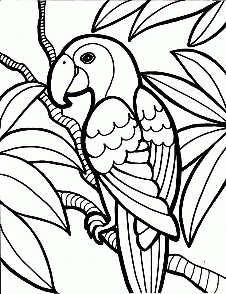The simple bird images are great for any age child from preschool to older children, these free printable coloring pages would be great to print off and use as an educational tool. Description from coloringkids.org. I searched for this on bing.com/images