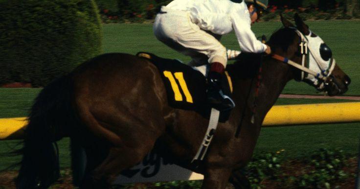 Cómo escoger un caballo ganador en el hipódromo. Las carreras de caballos han sido populares en los Estados Unidos por más de 150 años, y en la guía oficial de este país se muestran pistas de carreras en 32 estados. Es imposible predecir con exactitud el resultado de una carrera; éste se ve afectado por una serie de factores que incluyen la salud y la aptitud del caballo y el jinete, el clima, y ...