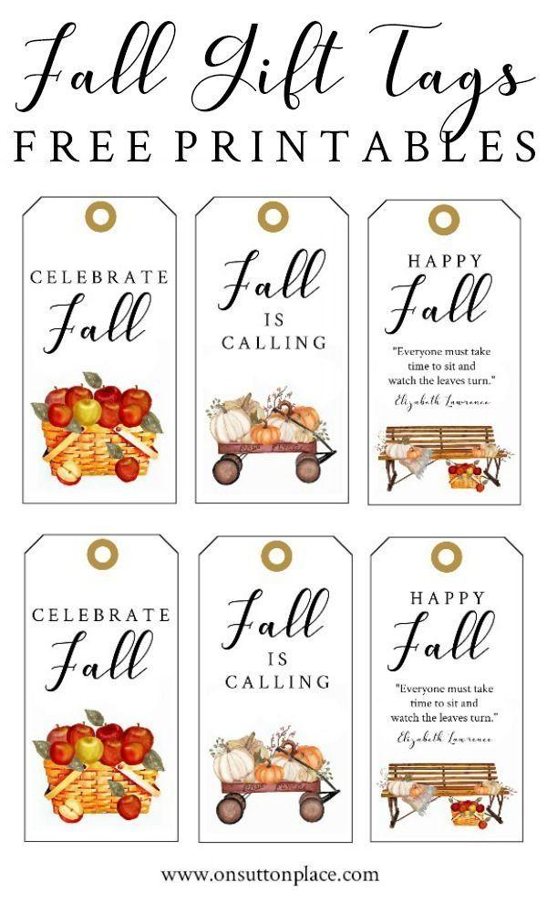 Fall Tags Fall ephemera Scrapbooking Card making ephemera Thanksgiving Tags Set of 6 Fall Guest Check Cards Pumpkin Tags