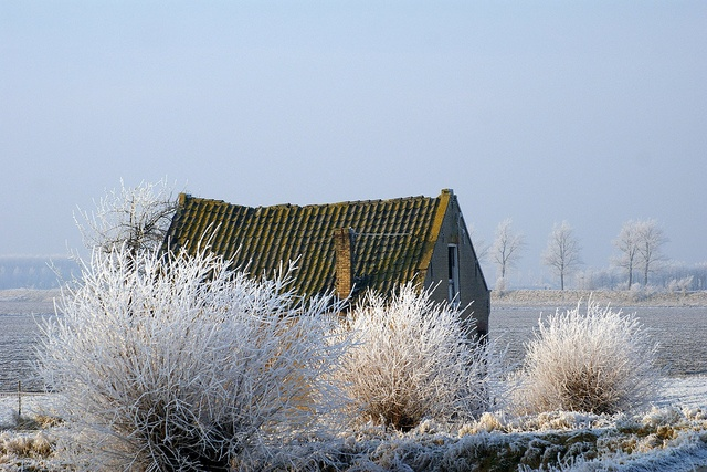 WINTER OP FLAKKEE