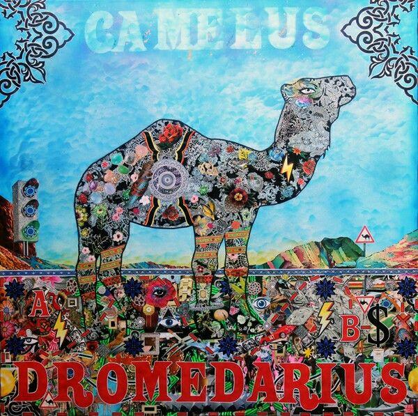 CAMELUS DROMEDARIUS 100x100cm 2015  By Manu MAZAUX  Pour en savoir plus sur cet artiste talentueux : http://www.manumazaux.com/