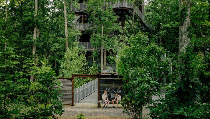 163 best landscape design images on pinterest landscape for Nelson byrd woltz landscape architects