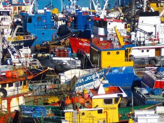 CHINQUIHUE-Puerto Montt-Chile Fotografía : Sandra Butkovich
