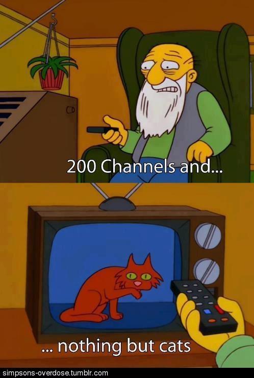 Choochoo Top Cat Meme