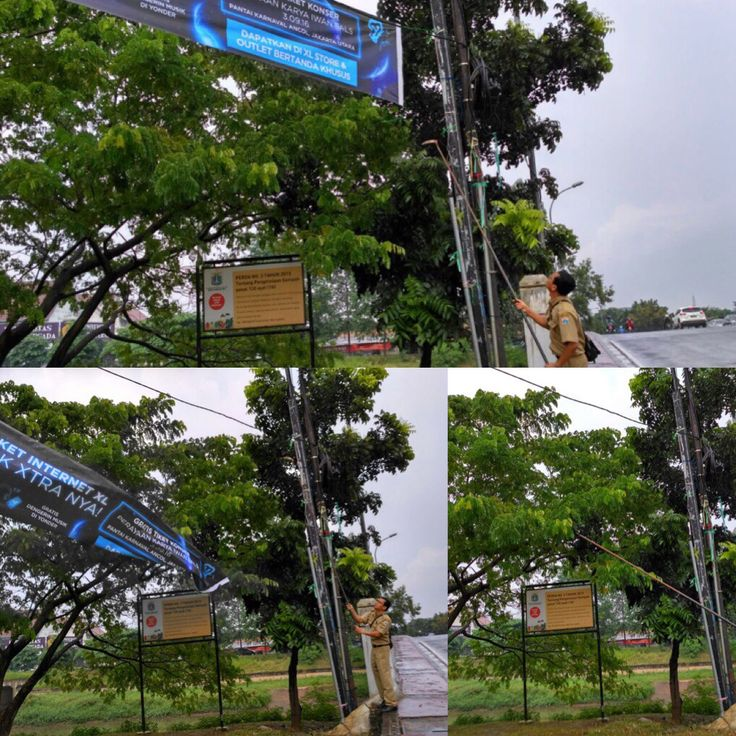 Petugas Uppd Dursaw melakukan pembongkaran spanduk liar di pinggiran BKT