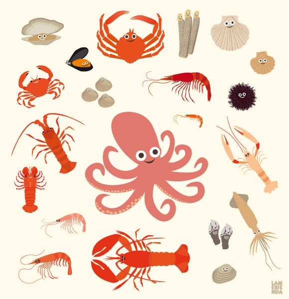 #illustration #seafood #shellfish #marisco #pulpo
