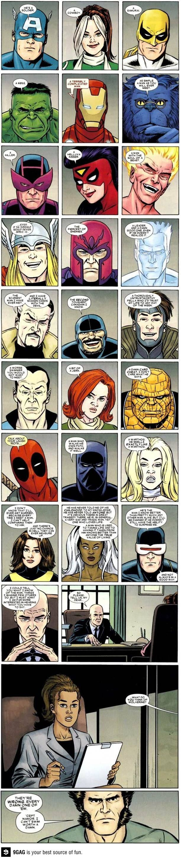 Perspectives Of Others About Wolverine (Comic)