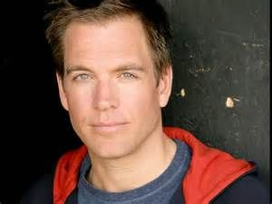 Michael Weatherly - Bing images