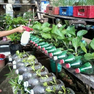17 best images about recycled container garden on pinterest gardens washers and plant stands - Recycled containers for gardening ...