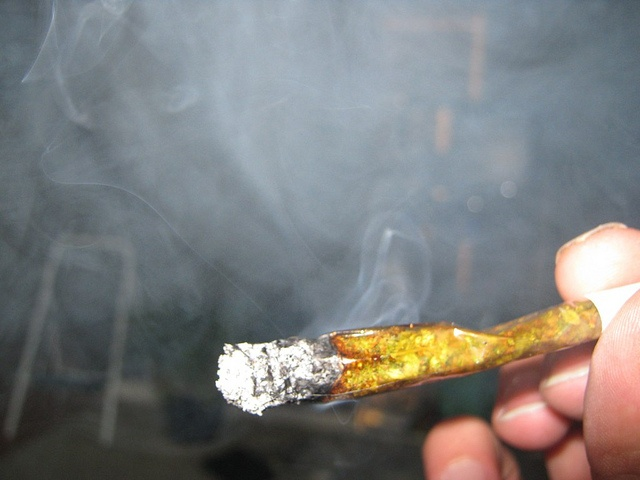 Pot smoking singles in denver co