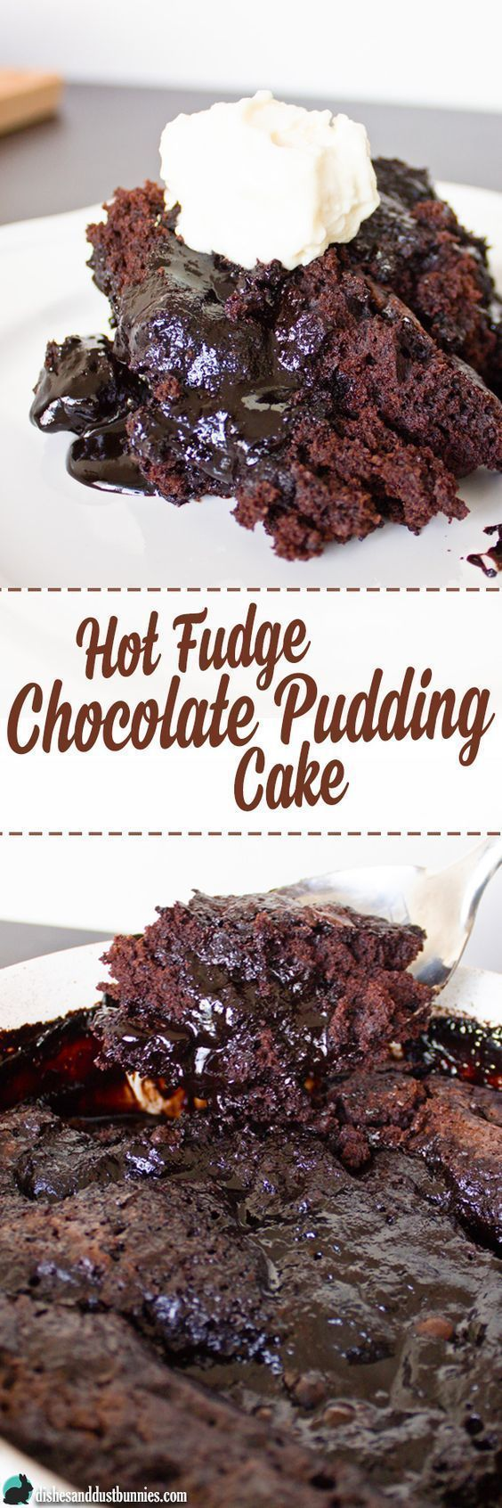 Hot Fudge Chocolate Pudding Cake from dishesanddustbunnies.com
