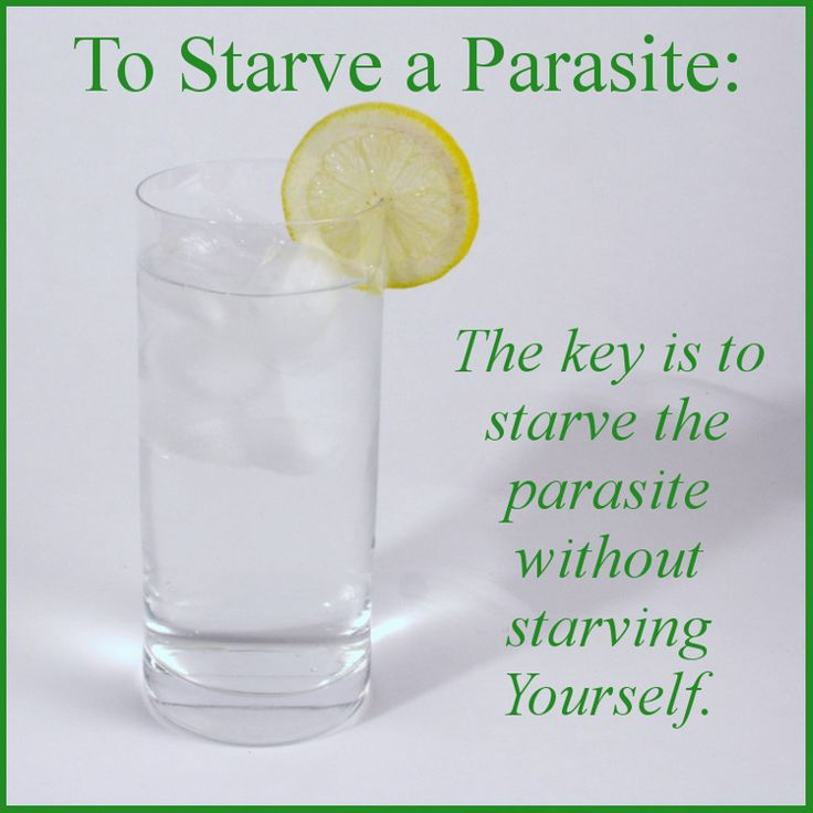 Tips on how to starve a parasite. The key is to starve the parasites without starving yourself. And you can do precisely that with bitter and spicy foods.