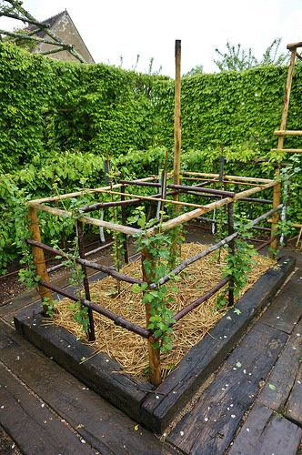 Creative wooden supports for plants (7) | by KarlGercens.com GARDEN LECTURES