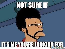 this cracked me up! i totally like the 'not sure if' -meme, because i like fry from futurama. And now they mixed up this meme with the lionel richie song! i'm not even a fan, but it's clever!