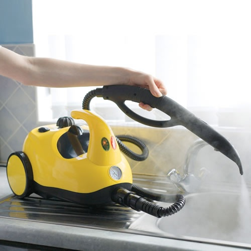 Hyginus Steam Cleaner 1600W with a Range of Accessories