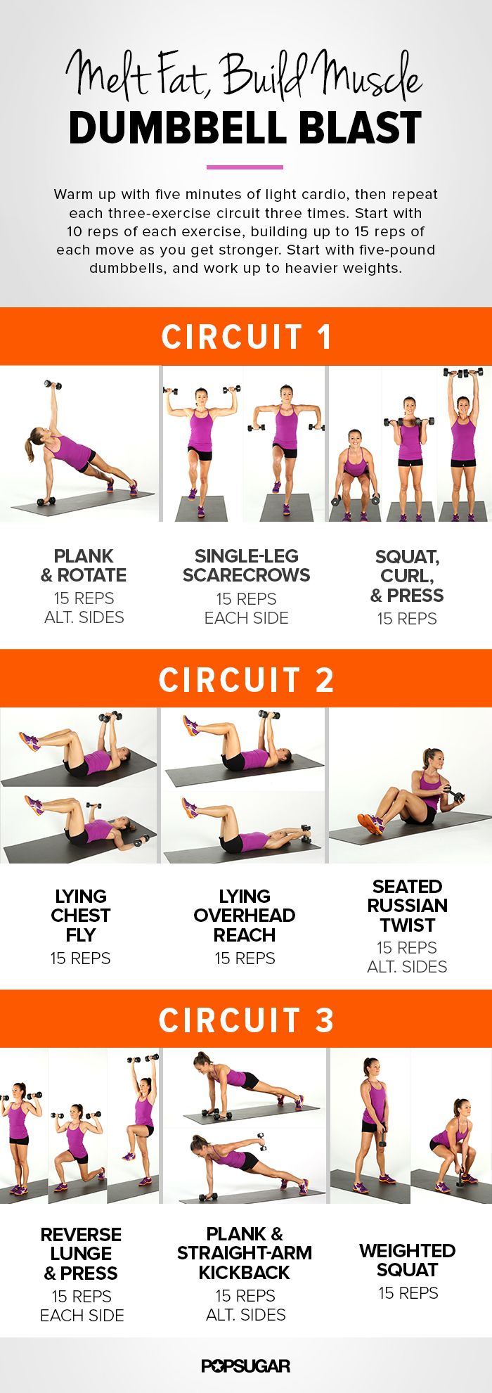 Melt Fat, Build Muscle Dumbbell Blast, Full Body Workout via FitSugar #printable #strong #fitness