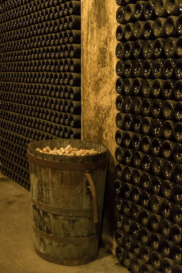 Mallorca Besichtigung der Weinkellerei Bodega José Luis Ferrer