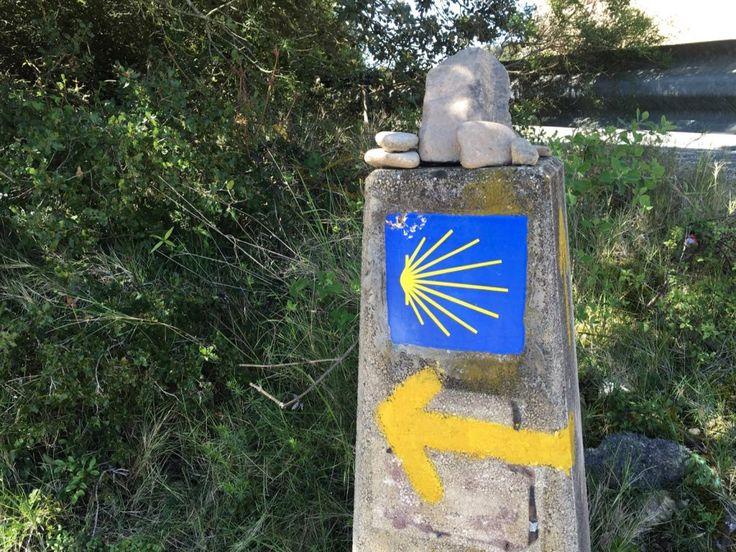 Camino de Santiago: Day 8, Villatuerta, Spain