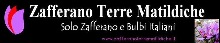 produzione e vendita on line di #zafferano zafferanoterrematildicheit