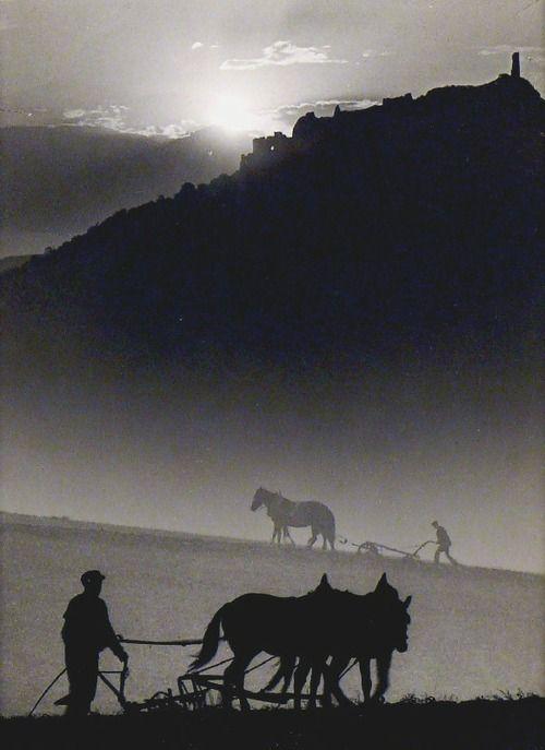Ploughing, 1935 by Jenő Dulovits