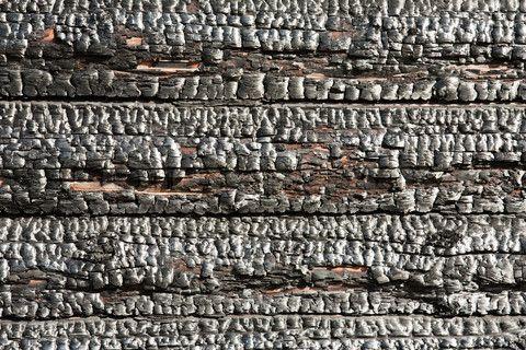 Image of 'Fire heat burnt black coal ruined wood log house'