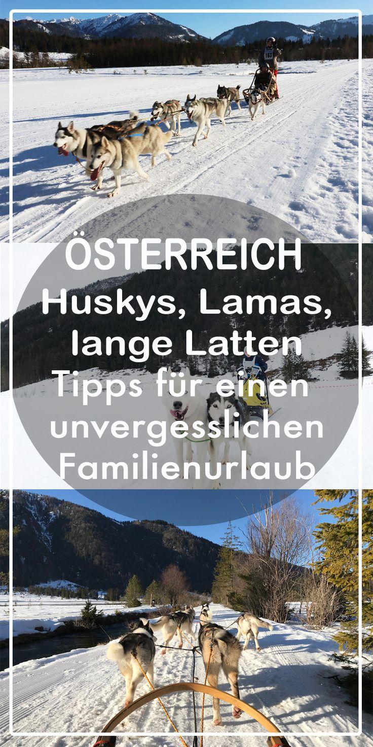 Huskys, Lamas, lange Latten – Winterurlaub im Pillerseetal mit Kind. Reisen mit Kind - Winterurlaub in Österreich - Schlittenhunde Camp Pillerseetal.