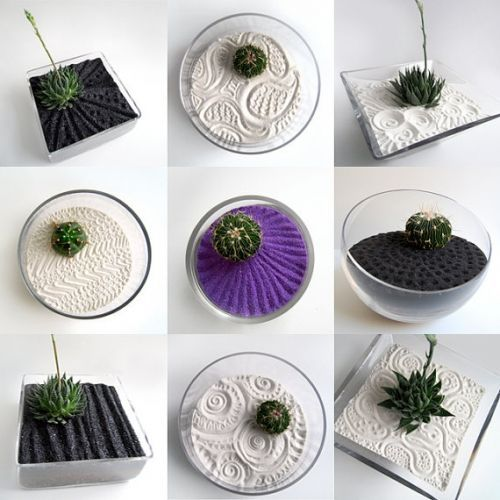 DIY zen garden. I might nestle an air plant into the sand rather than a cactus, though.