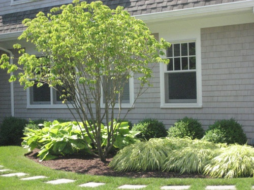 Landscape for front side of house outside pinterest for Cape cod home landscape design