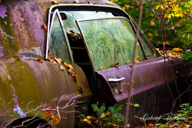 old rusted mustang by Gabriel  Harnois on 500px