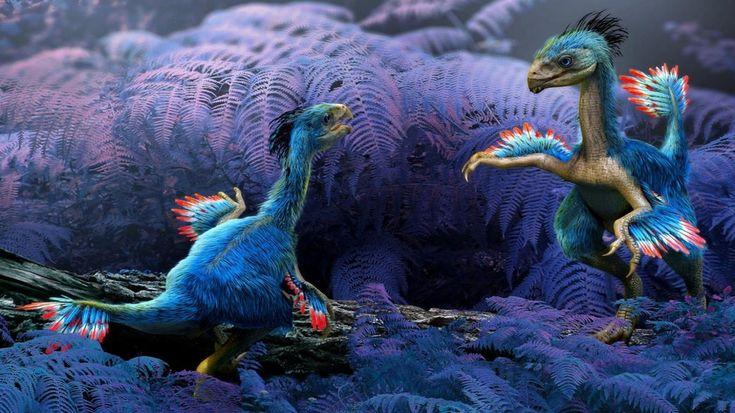Dinosaur/birds