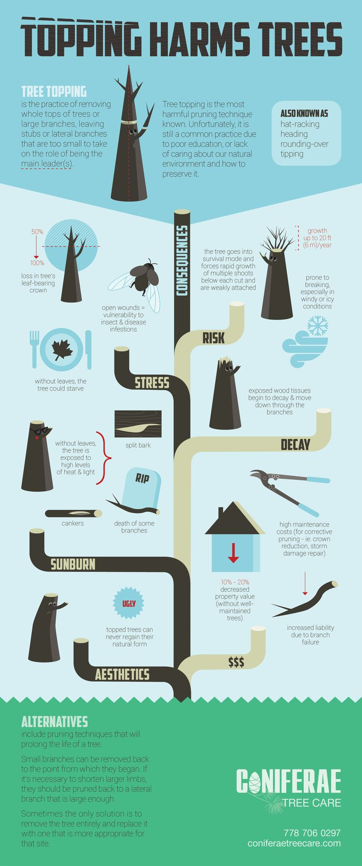 Topping Harms Trees   #Infographic #ToppingTrees #Environment