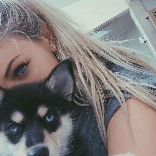 animal, beautiful, blonde, blue, cute, dog, eyebrows, eyes, feed, girl, hair, perfect