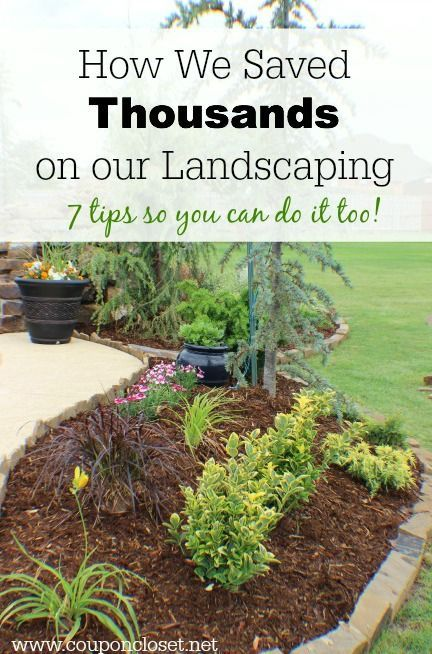 We did our backyard landscaping this summer and saved a lot of money  You can too  Save on Landscaping with these easy tips