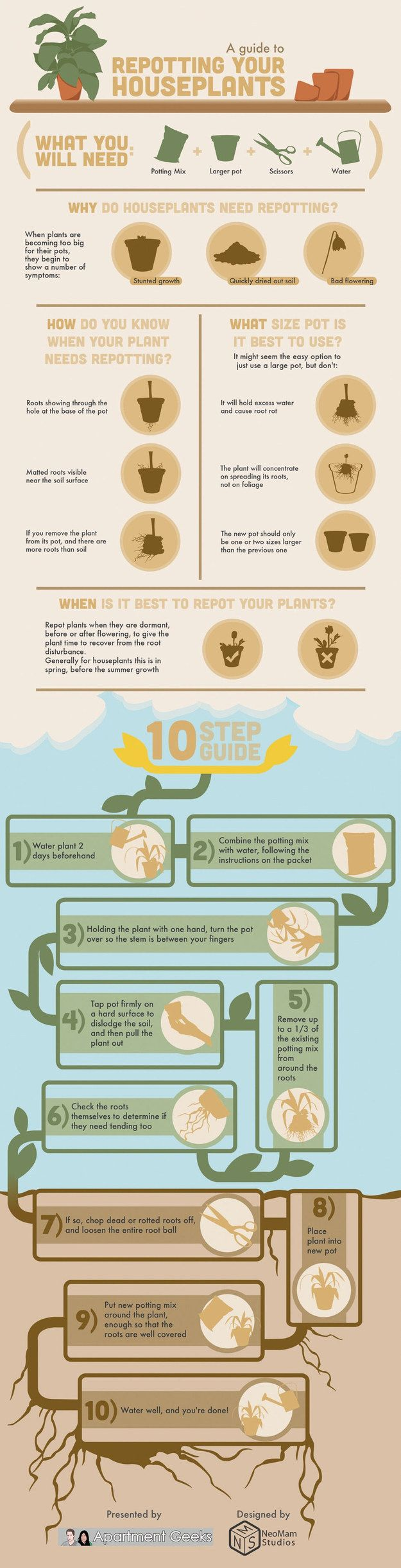 Here's how to repot a houseplant (without killing it). | 23 Absolutely Essential Gardening Diagrams