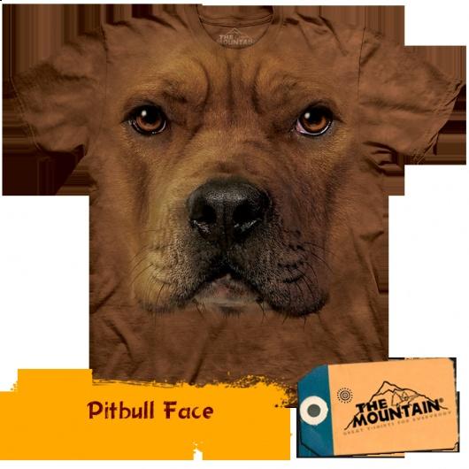 Pitbull Face