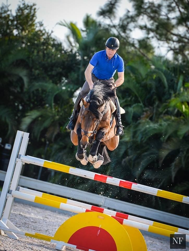 Big Star and Nick Skelton spotted schooling at WEF…time for a badass comeback!!!!
