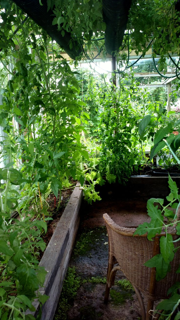 162 best greenhouse images on pinterest greenhouses greenhouse